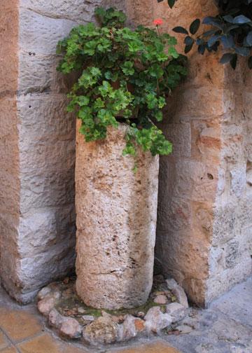 planter at Haret Jdoudna