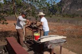 pressing sugar cane