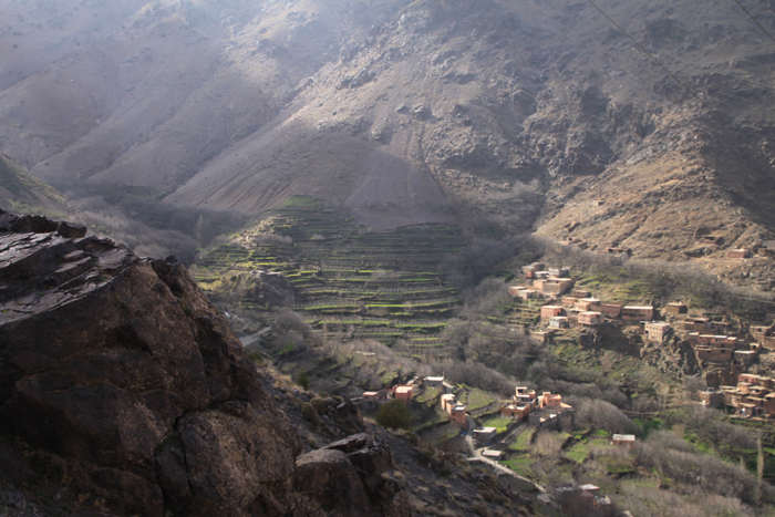 terraces in the high atlas mountains