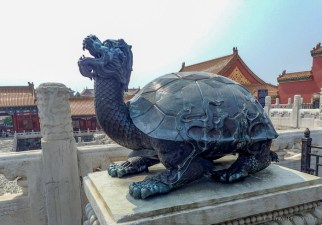 dragon turthle