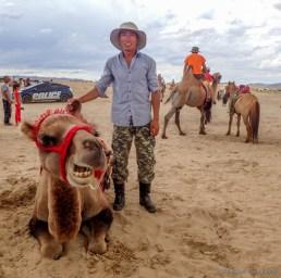 my camel jockey