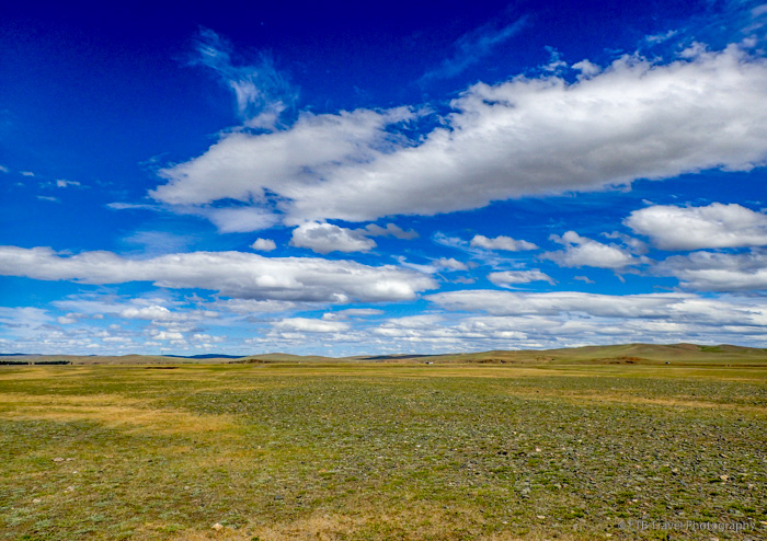 race course for Naadam in Mongolia