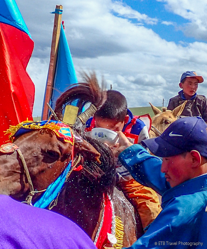 naadam wards ceremony with airag flicked on horse