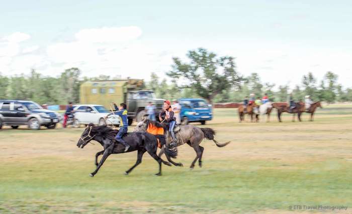 tsenkher naadam horse race in Mongolia