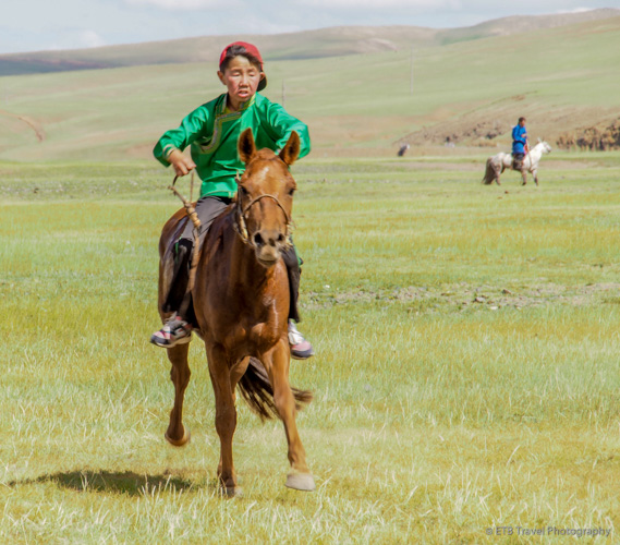 last place horse at naadam horse race