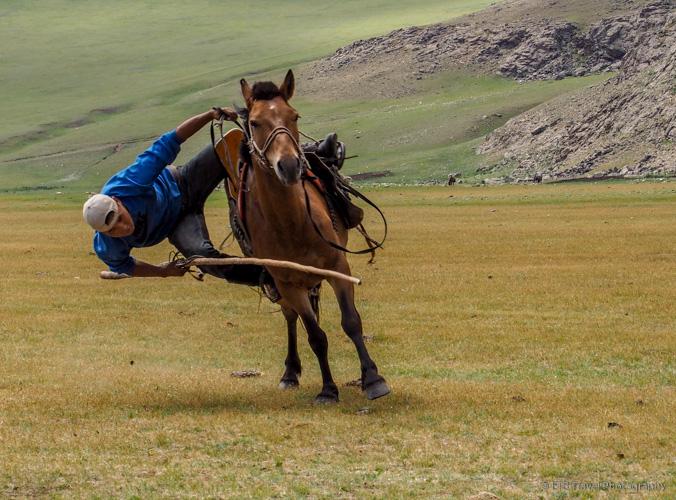 mongolian cowboy picking up stick