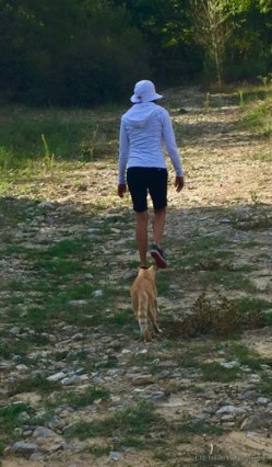 Pomodoro loved Virgiinia. He followed her on the walk