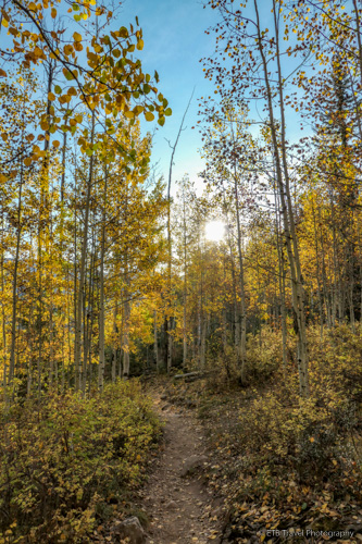 Purgatory Creek Trail