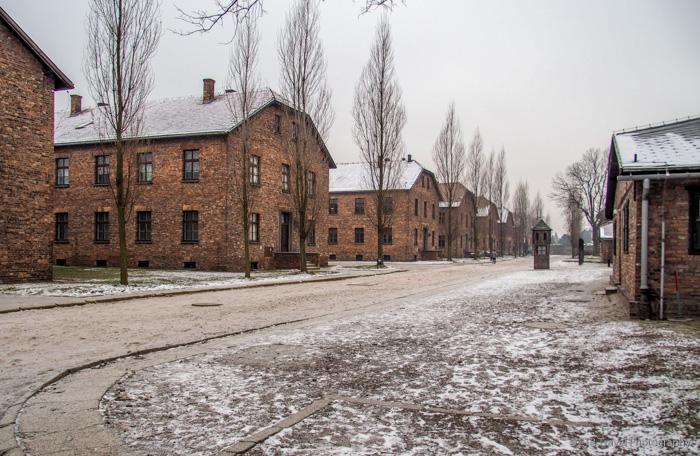 rows of blocks at Auschwitz