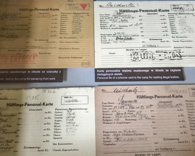 prisoner files from Auschwitz