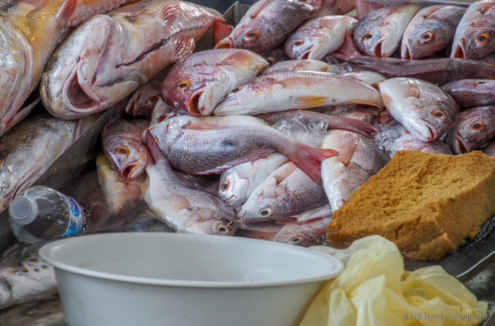 fish at the fish market in Panama City