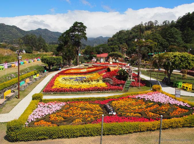 flower festival in boquete