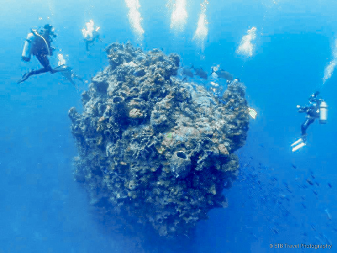 Scuba diving the Needle in Saba