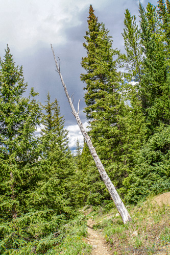 storm approaching Three Mile Creek Trail