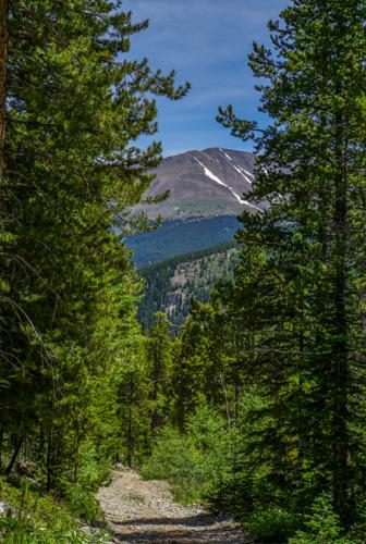 view on Burro Trail in Breckenridge