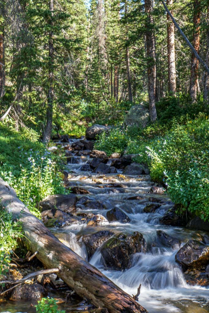 creek in Rocky Mountain National Park