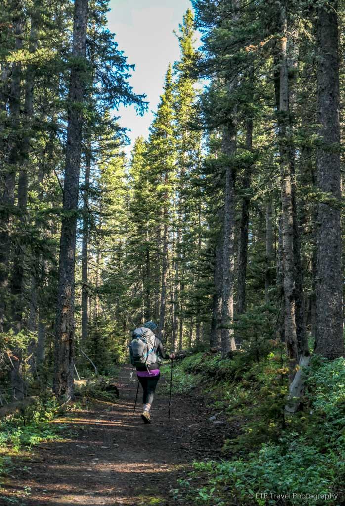hiking on the Sneffels Traverse