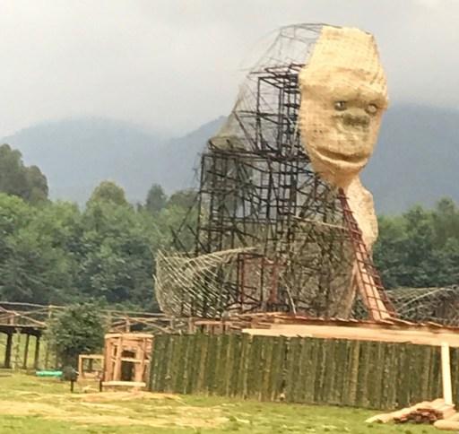 gorilla structure at Kwita Izina