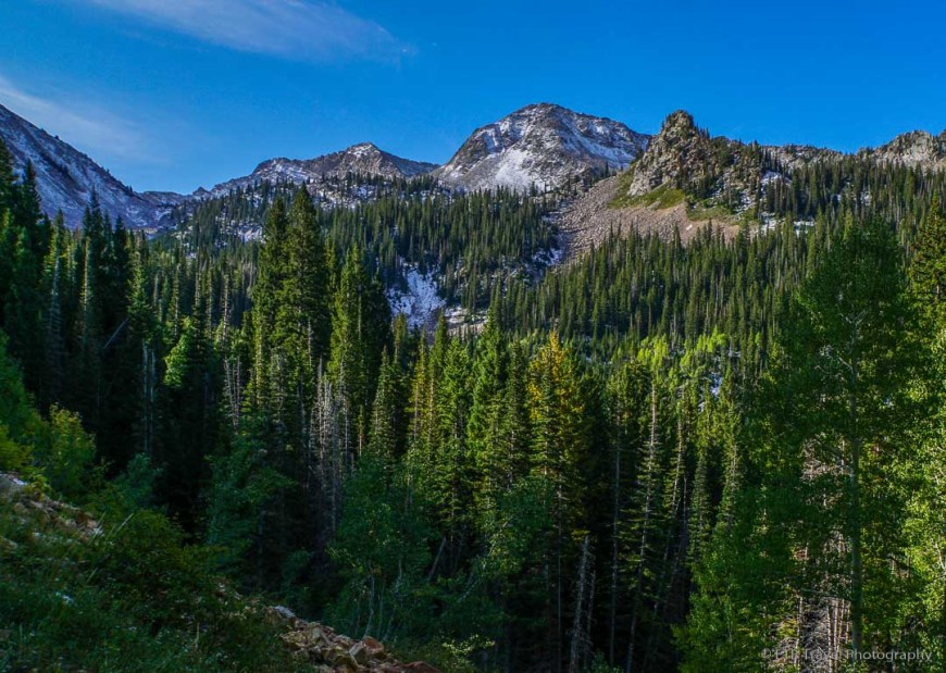 view in Little Cottonwood Canyon