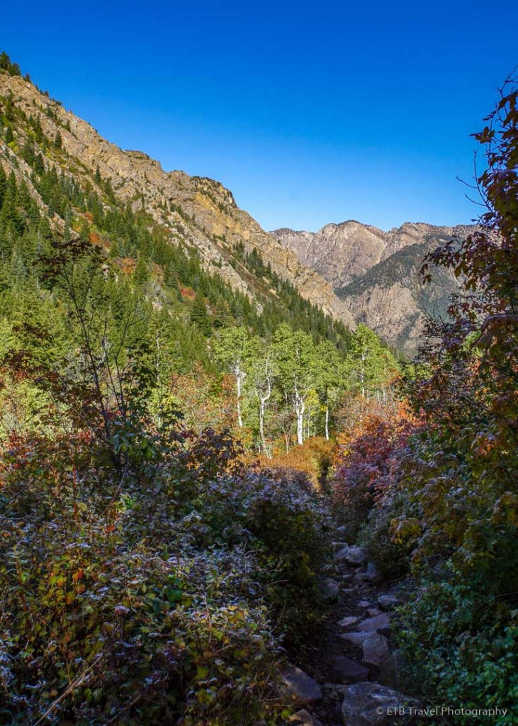 Mill B South Fork Trail