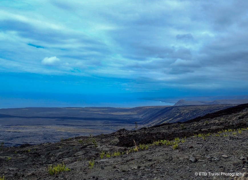 View from a pullout in Hawai'i Volcanoes National Park