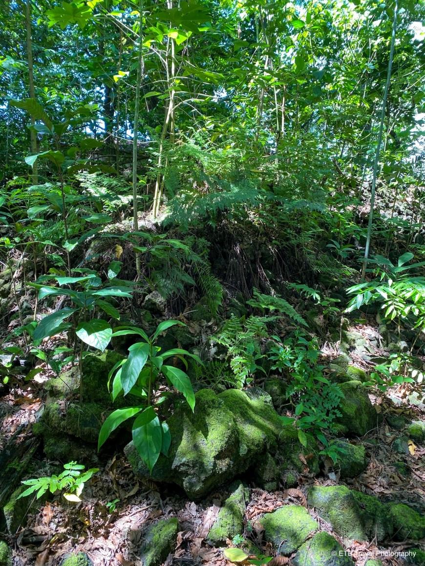 Star mound in American Samoa