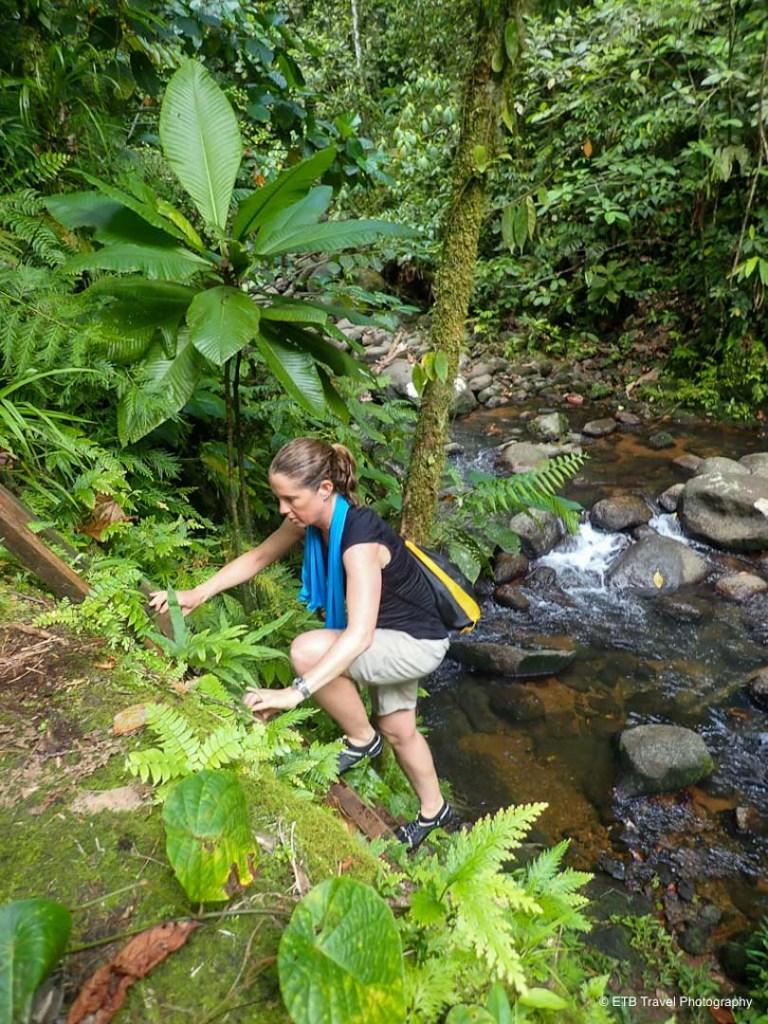julie climbing up ladder on hike near munda