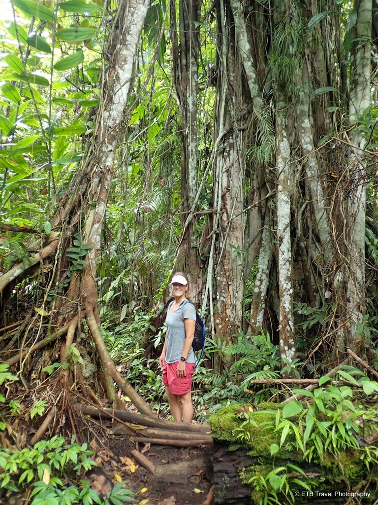 hiking to tenaru falls in guadalcanal