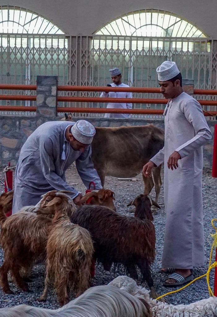 goat sellers at nizwa market