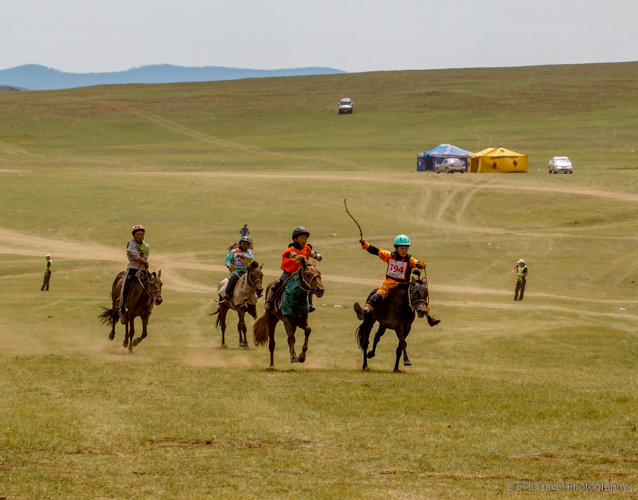 horse race at naadam