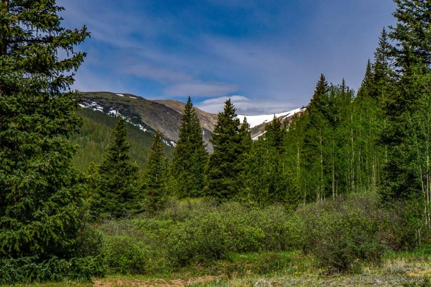 view on Bruno Gulch Trail