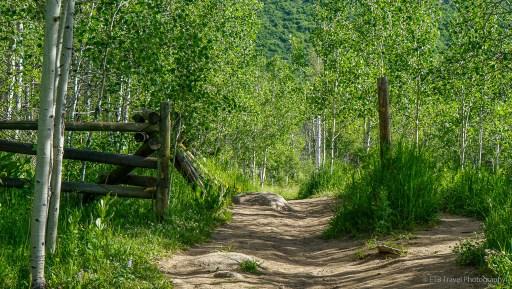 mad creek trail