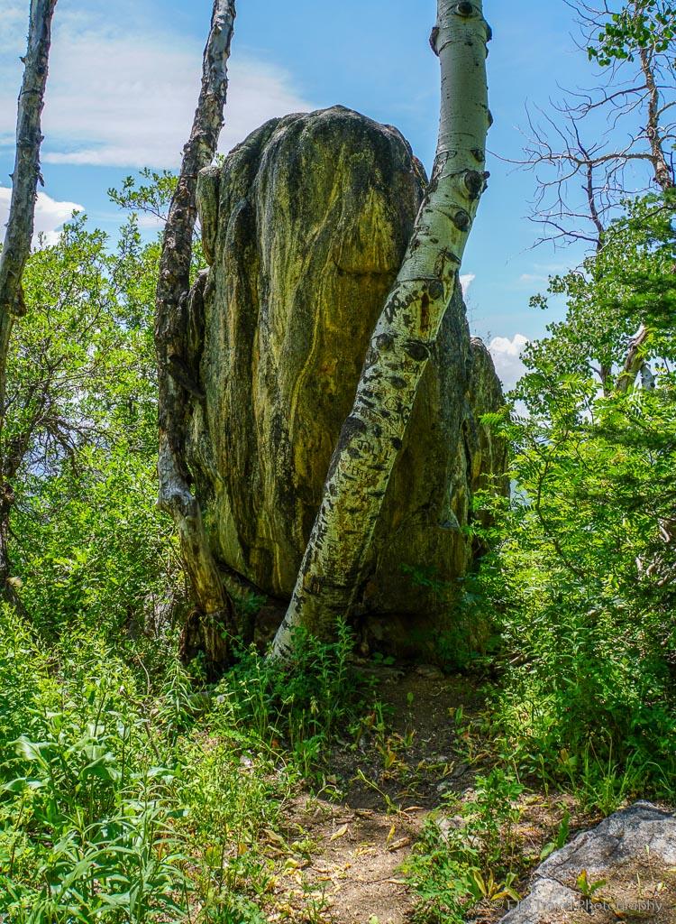 rock on thunderhead trail