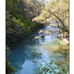 photographic note card, blue spring in missouri