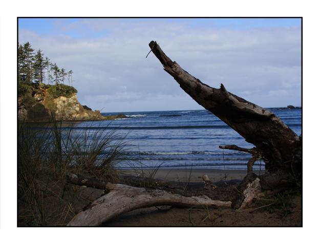 photographic note card, sandy beach dunes