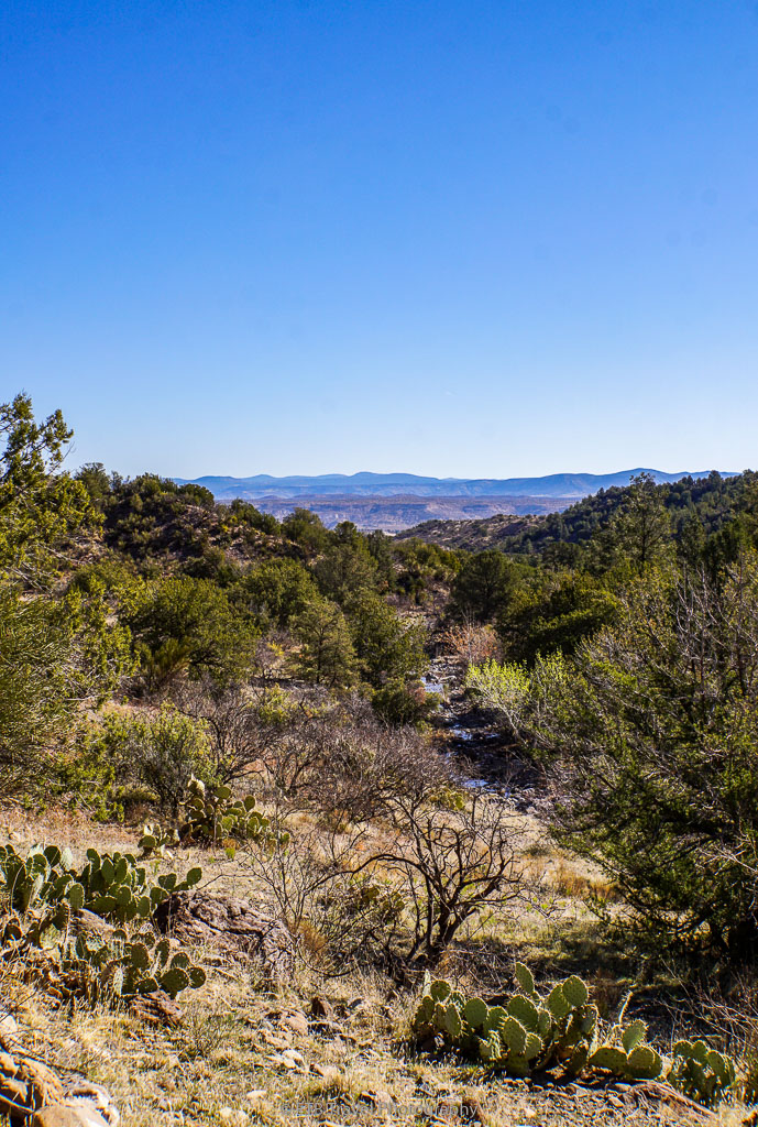 view from copper canyon loop trail #504