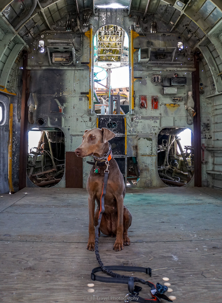 Annie in the Con air plane