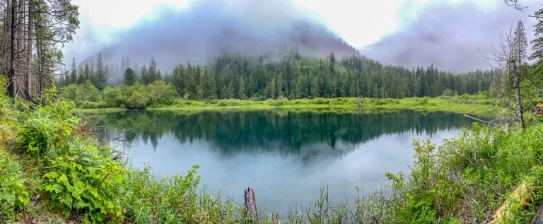 elk lake, a dog friendly hike on the olympic peninsula