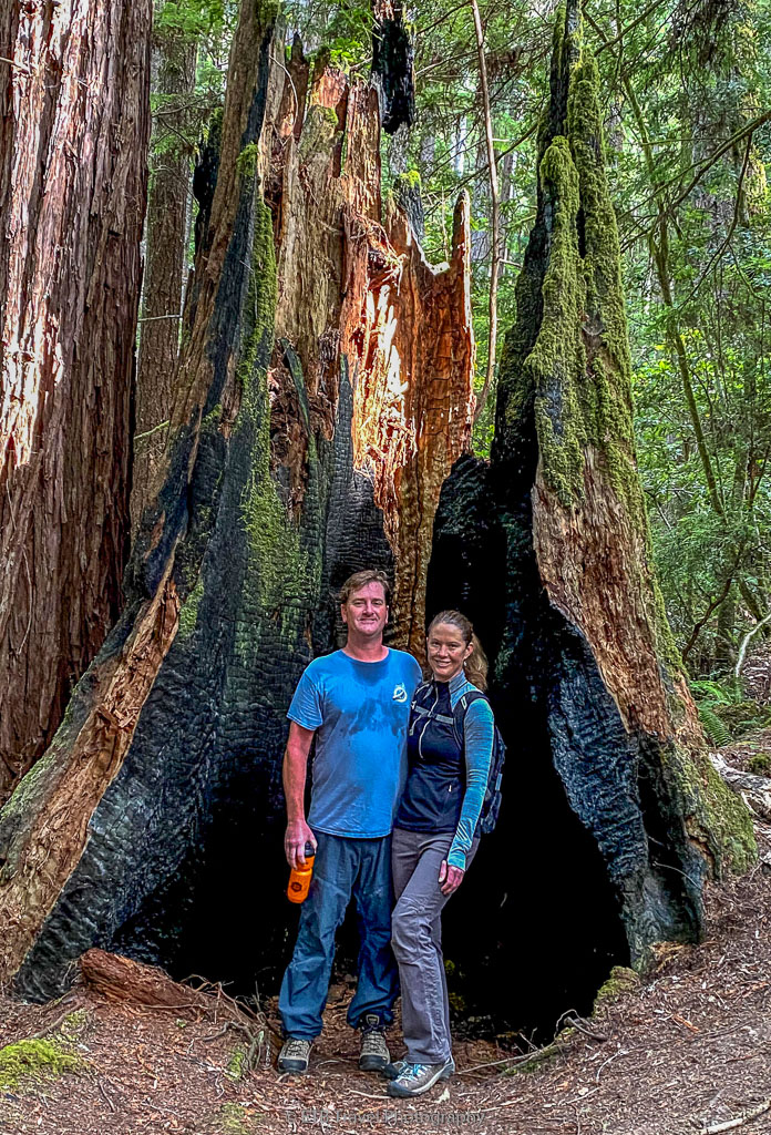 dustin and julie in giant tree