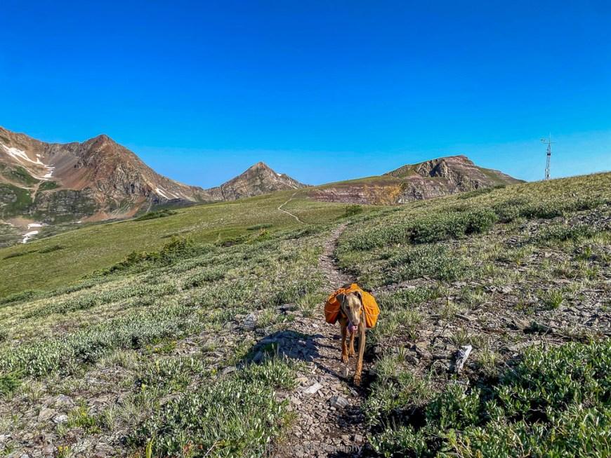 spur trail on scarp ridge