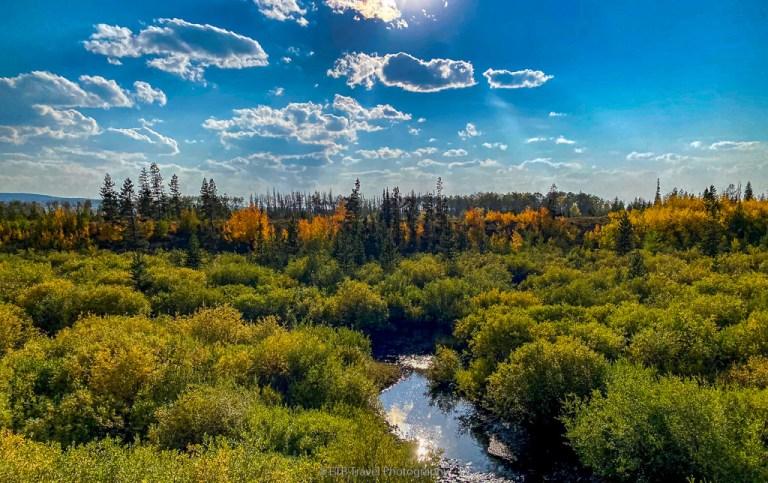 fall colors near walden colorado