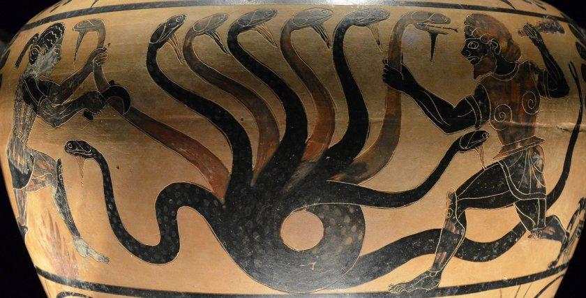 Hydra. Photographer: Carole Raddato