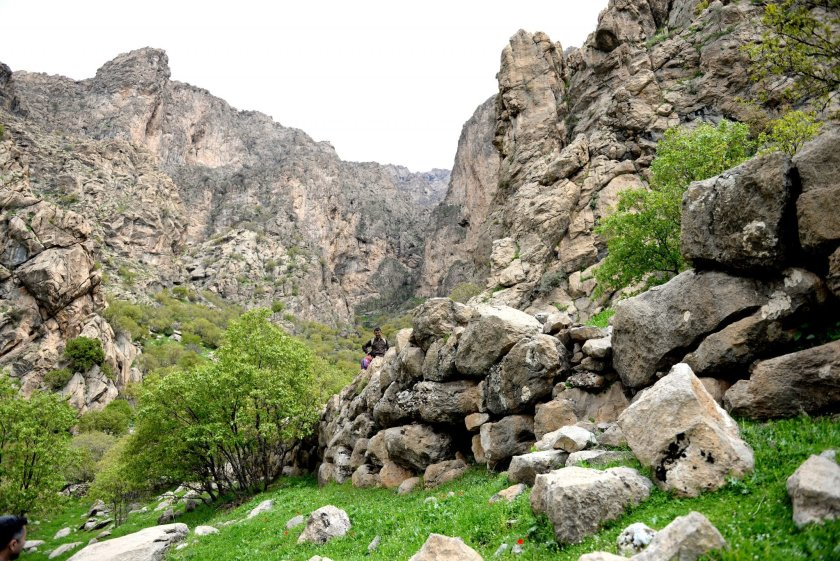 One of the remnants of large stone walls of what appears to a settlement. This wall is about 15 m in length and 2.5 me in height. There are other walls on the same and the other side of the Mountain's valley.