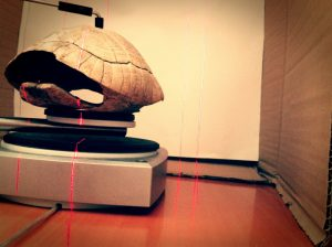 Tortoise shell undergoing a 3d laser scan. Photo © Luthieros music instruments.