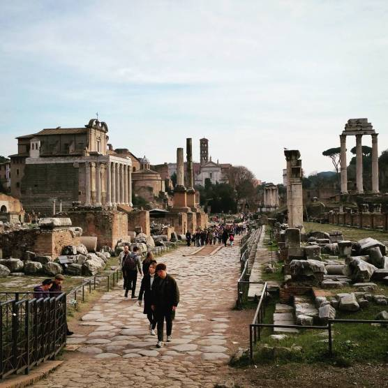 The stereotypical view of the Roman Forum that we saw during our Rome visit.