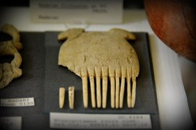 Hippopotamus ivory comb. From tomb 25/5130. El-Badari, Egypt. Badarian Period, circa 5000-4000 BCE. With thanks to the Petrie Museum of Egyptian Archaeology, UCL. Photo © Osama S. M. Amin.
