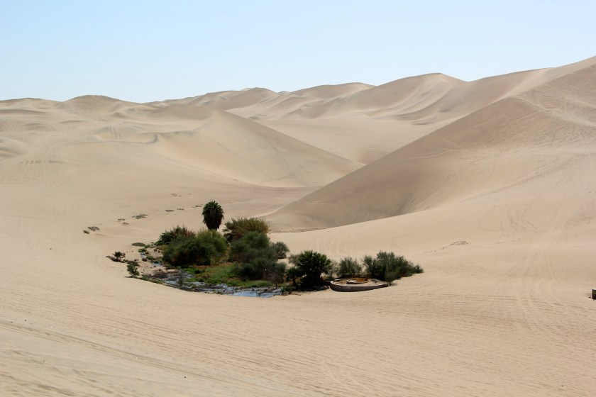 A small desert oasis located near the town of Huacachina. This part of the coastal desert has sand dunes that resemble those of the Sahara. Image © Caroline Cervera. Nazca lines
