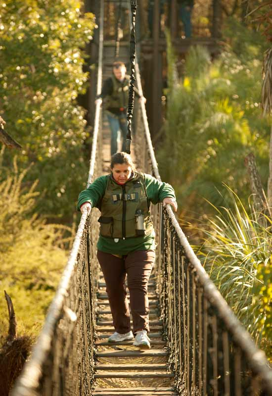 Guest walking across rope bridge