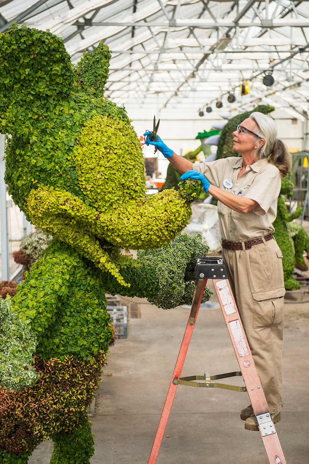 Preparing a Mickey Mouse topiary