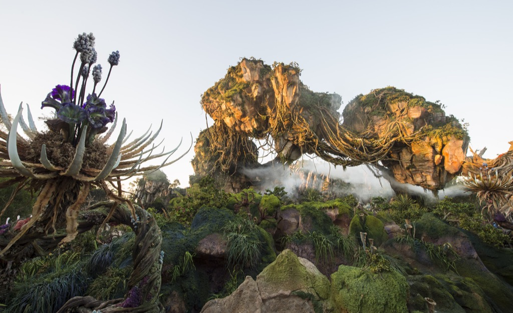 Floating mountains grace the skyline while exotic plants fill the colorful landscape inside Pandora - The World of Avatar, which opens May 27, 2017 at Disney's Animal Kingdom. Pandora - The World of Avatar will bring a variety of new experiences to the park, including a family-friendly attraction called Na'vi River Journey and new food & beverage and merchandise locations. Disney's Animal Kingdom is one of four theme parks at Walt Disney World Resort in Lake Buena Vista, Fla. (Kent Phillips, photographer)